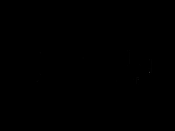 28 Gorilla Logo